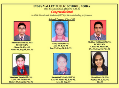 indus valley public school noida holiday homework 2017-18